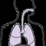 spirometer1